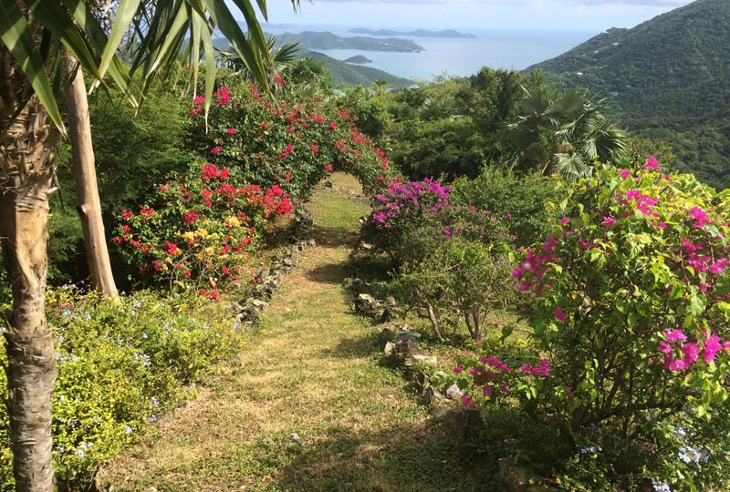 The garden at St John rental villa, Mystic Ridge in Coral Bay