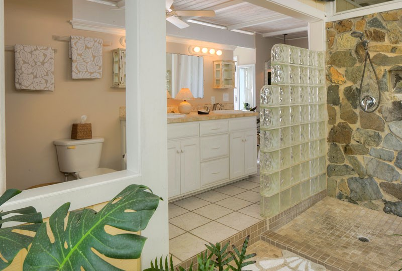 Sea Dream Villa, St John master bath
