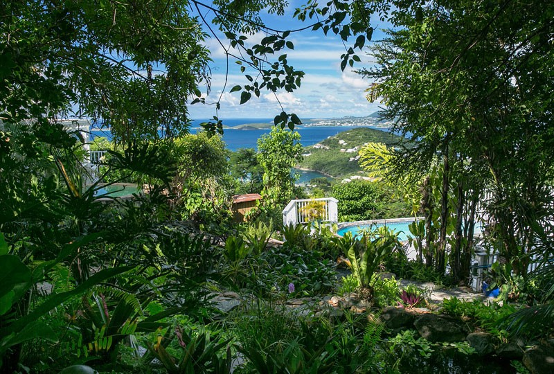 Sea Dream Villa, St John tropical gardens