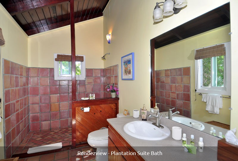 St John villa Rendezview Plantation Suite bath